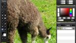 SplashUp Bildbearbeitungsprogramm Bilder bearbeiten Beispiel 1 Screenshot 1