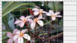 Splitz Bildbearbeitungsprogramm Bilder bearbeiten Fotos zerlegen Screenshot 1